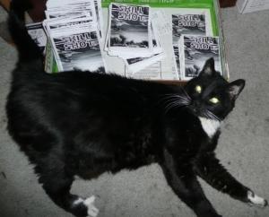 RIP Hector the Skill Shot cat