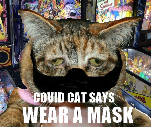 COVIDCAT WEAR MASK